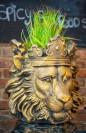 Nonnas Chesterfield Lion