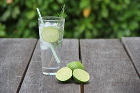 gin menu bar Chesterfield